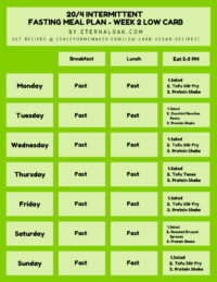 20_4 Week 2 Low Carb Intermittent Fasting Meal Plan Example
