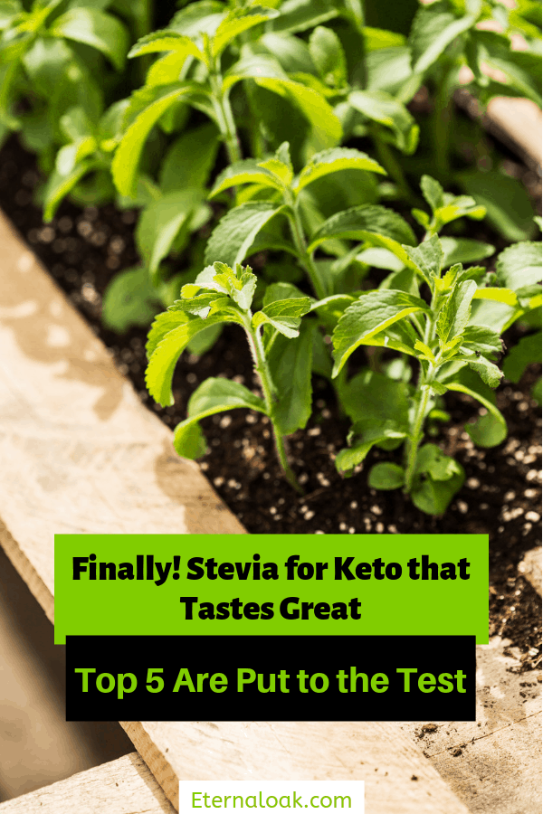 Finally! Stevia for Keto that Tastes Great - Top 5 Are Put to the Test